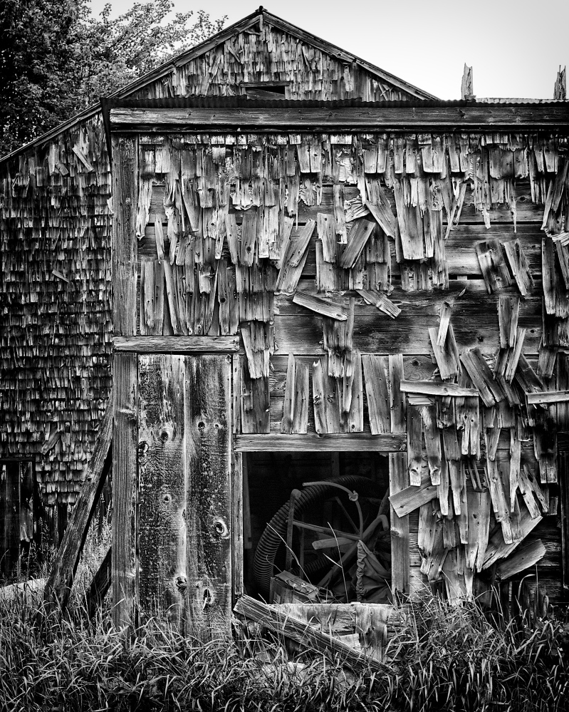 """At the Art Gallery at the University of New England, Kerry Michaels' """"Lovell Barn"""" is paired with a 1923 quote by Kate Douglas Wiggin, """"It is not always in gold days, but in gray ones, that the soul grows and the purpose of life unfolds."""""""