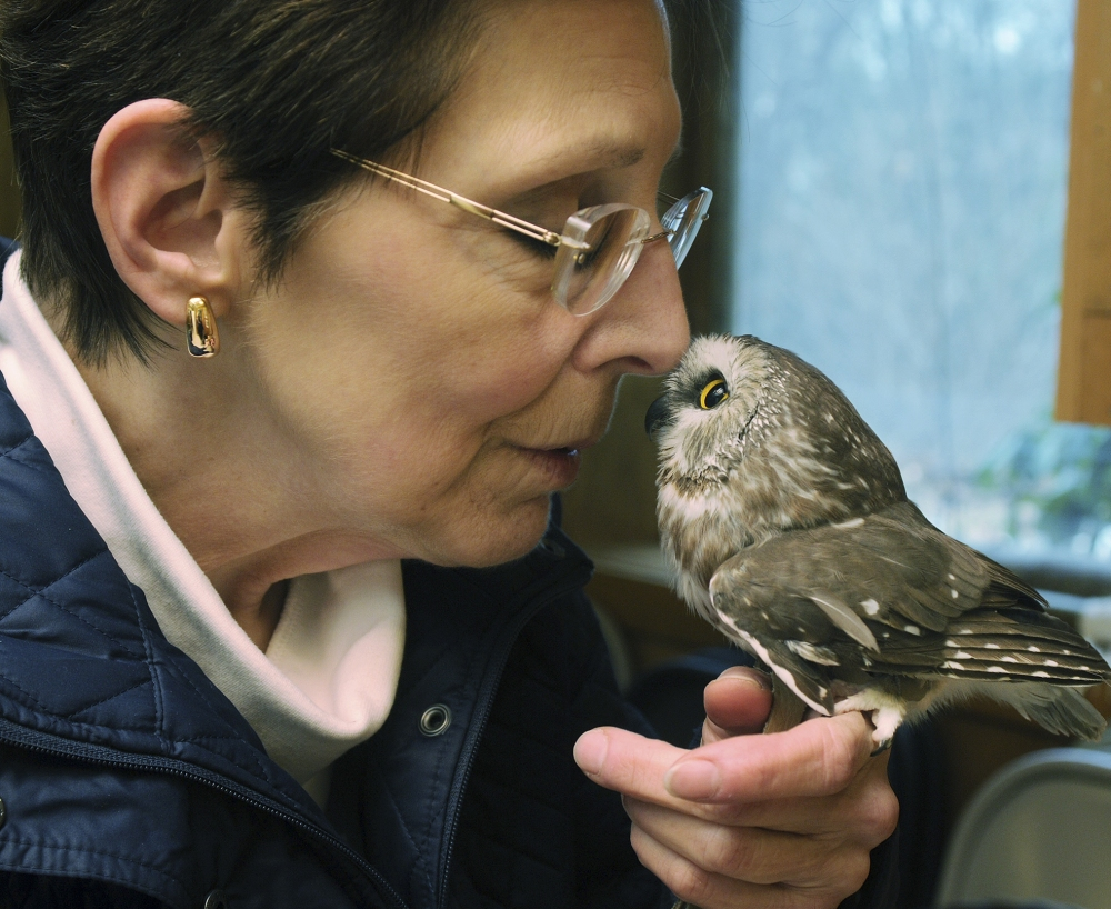 "Julie Collier snuggles with a northern saw-whet owl. ""They try to outsmart you,"" she said."