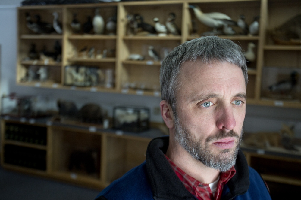 Eric Topper, director of education for the Maine Audubon, talks about the theft from the group's mounted collection, shown behind him in Falmouth on Wednesday.