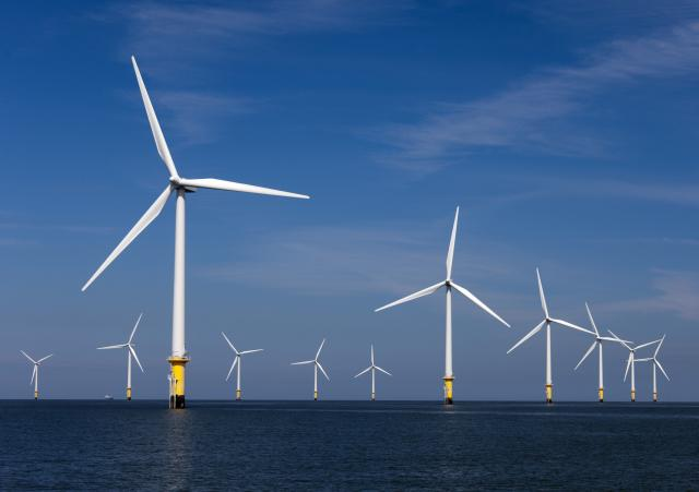 This wind farm off the coast of Europe shows how Cape Wind's 130-turbine proposal for Nantucket Sound might look. Courtesy photo