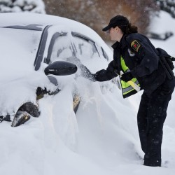 Norwich, Conn., police officer Heather Buonanni tickets an illegally parked car. The storm dumped nearly 2-feet of snow in the region. The Associated Press / The Day, Sean D. Elliot