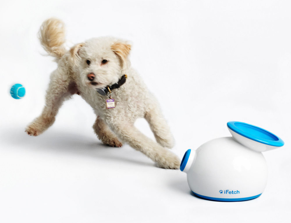 With iFetch Ball Launcher for Dogs by your side, your fetch-loving dog will never be bored again. $99 on the SkyMall website.