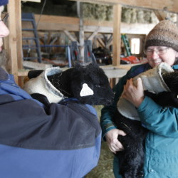 Mary Ann Haxton, left, holds week-old lamb Elsa as Marty Elkin, right, holds Ebony at A Wrinkle in Thyme Farm in Sumner on Feb. 14. The lambs were born on a night when temperatures plummeted to 20 below zero. Because of the cold, the lambs are wearing coats fashioned from an old wool sweater.