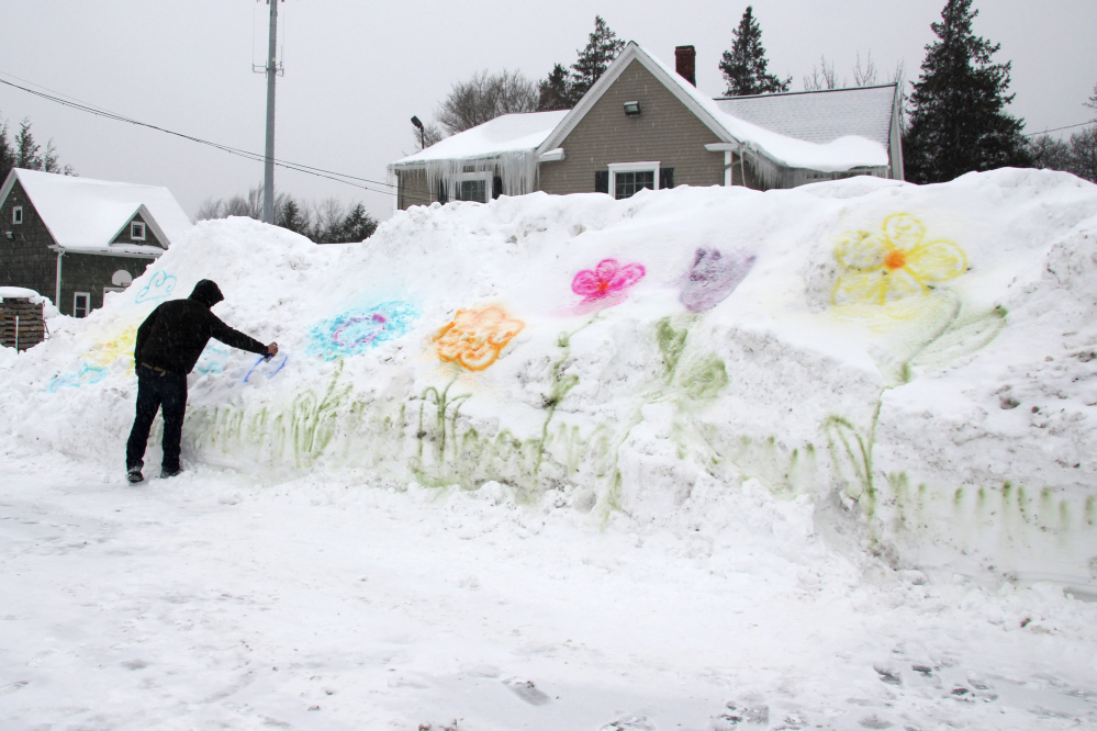 William Green, 25, spray paints flowers on a snowbank in the parking lot of Genrich's Garden Center where he works in Irondequoit, New York. This has been one of the coldest Februarys on record in the region with frigid temperatures and more snowfall forecast for the coming week.