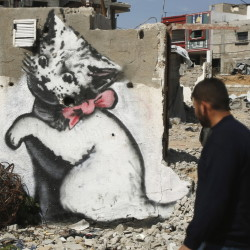 A mural of a kitten was presumably painted by street artist Banksy in the northern Gaza Strip.