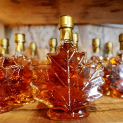 Maple syrup on display for purchase at Hilltop Boilers in Newfield during Maine Maple Sunday 2013.