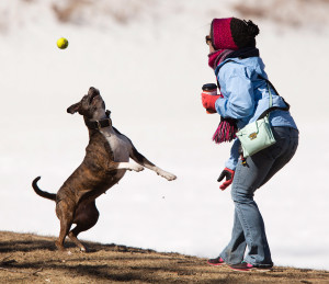 MARCH 23: Samantha McDougall of Portland plays ball wth her dog Emma at Deering Oaks park on a frigid spring day in Portland.