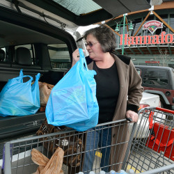 Joan Cushman of Portland loads groceries into her car at Hannaford's Forest Avenue store, which will charge for plastic bags after a city ordinance takes effect April 15. Hannaford's Portland stores will give out reusable bags from March 29 through April 14. John Patriquin/Staff Photographer