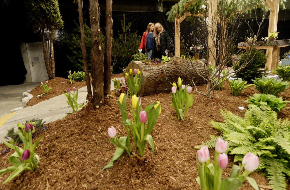 "Deborah Casey, left, and Jane Mack of Cape Elizabeth look over a display by Zach Campbell of Campbell's Landscape & Design at the Portland Flower Show on Friday. The two make the flower show an annual outing, Mack said. ""We pretend we just got off a plane in Miami Beach."""