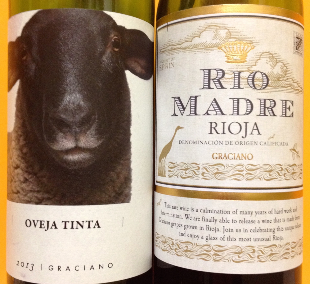 Many Spanish wines are known by duende, the power to attract through personal, and deliciously dark, magnetism.