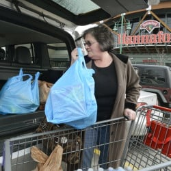 "Joan Cushman of Portland loads groceries into her car at Hannaford's Forest Avenue store, which will charge for plastic bags after a city ordinance takes effect April 15. Hannaford's Portland stores will give out free reusable bags from March 29 through April 14 in advance of the ordinance. Businesses are phasing out foam containers and gearing up to charge customers a nickel for disposable shopping bags in preparation for two new ""green packaging"" policies that take effect in the city next month. John Patriquin/Staff Photographer"
