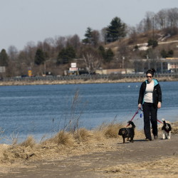 Lisbeth Wierda of Portland walks along Back Cove Trail in Portland on Tuesday. Data show Cumberland County residents are more likely to be active than the national average.