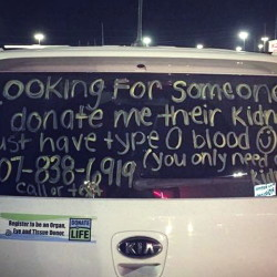 Christine Royles posted this message on the back of her car last fall with the hope that someone would see it and donate a kidney to her.