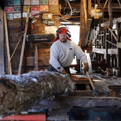 Sawyer Bob Potter wrestles with a log to get it on the carriage at the family saw mill in Gilmanton, N.H. The small family mill, built by his father, has been on Potter's 250-acre farm since the 1960s but is only used on occasion to cut lumber.