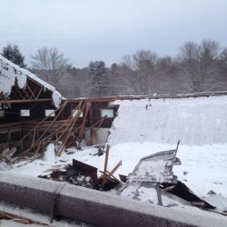 The roof of a horse barn in Norwell, Mass. collapsed on March 2, leaving several horses trapped inside.