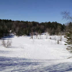 The development proposal would leave an old sand pit as a permanent open space  or a town park. This is a view from the top of the sand pit – which is a popular wintertime sledding hill – back toward the proposed roadway. Photo courtesy of Matt Teare