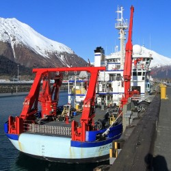 The National Science Foundation research ship Sikuliaq is moored Feb. 25, 2015, in Seward, Alaska. The floating Arctic laboratory four decades in the making arrived at its home port and stands ready to begin unlocking mysteries of one of the wildest places on Earth. The 261-foot Sikuliaq next month will leave Seward, sail around the Aleutian Islands and tuck into sea ice in the Bering Sea to begin its work. The Associated Press