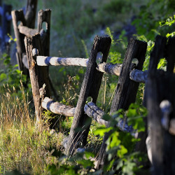 This old weathered fence in Falmouth catches the last rays of a setting sun. Fences define spaces and add beauty to the environment.