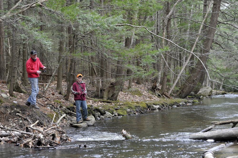 Group seeks maine anglers to help in search of wild brook for Maine state fish