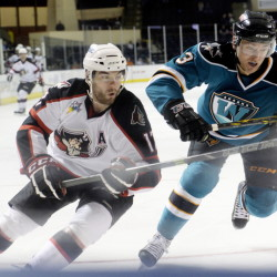 Portland's Jordan Martinook chases a loose puck with Worcester's Gus Young during the Sharks' 1-0 win Tuesday in Portland. Shawn Patrick Ouellette/Staff Photographer