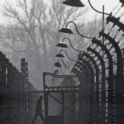 A visitor walks between fences at the Auschwitz-Birkenau memorial and former concentration camp.