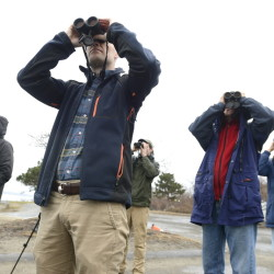 With eyes to the sky, Maine Audubon naturalist Doug Hitchcox (background in green jacket) leads a group of birdwatchers along the Eastern Promenade in Portland. From left, is Kathy Stewart of South Portland, Ned Kane of Portland, Joe Bates of Portland and Kristina MacCormick of Portland.