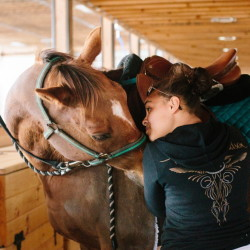 Barn manager Kayla Candelmo tightens Cove Bay's girth at Dark Horse Equestrian Center in Saco.  Whitney Hayward/Staff Photographer
