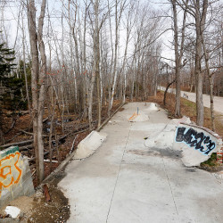 Some Peaks Island residents question why the skate park has to be removed since it's not hindering any development or blocking the transfer of any land.