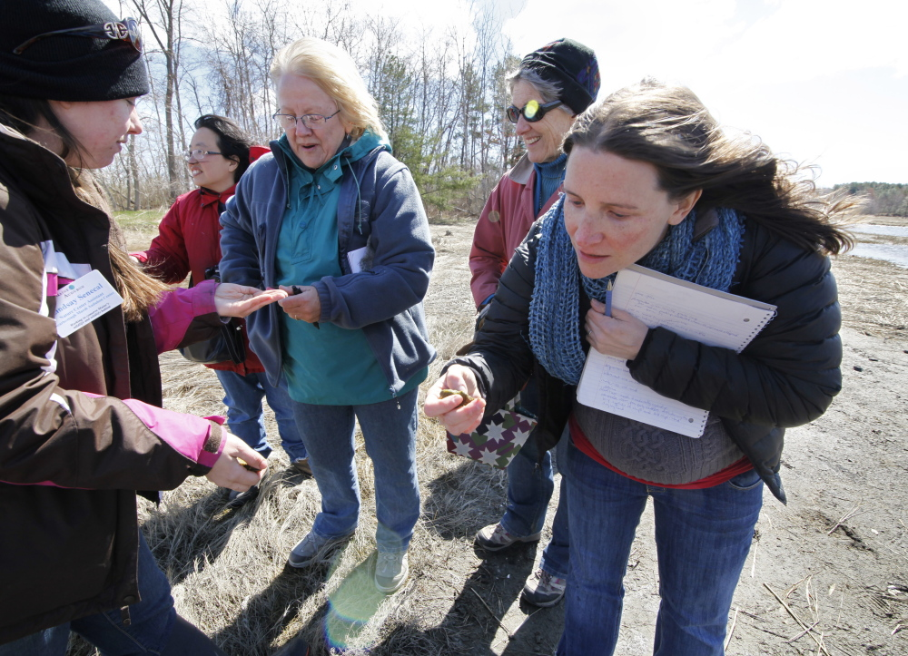 Becky Brosnan of Cape Elizabeth, right, inspects a sample of algae from the Scarborough Marsh while touring with Audubon Nature Center assistant Lindsay Senecal, left, and other volunteer naturalists during a training session.