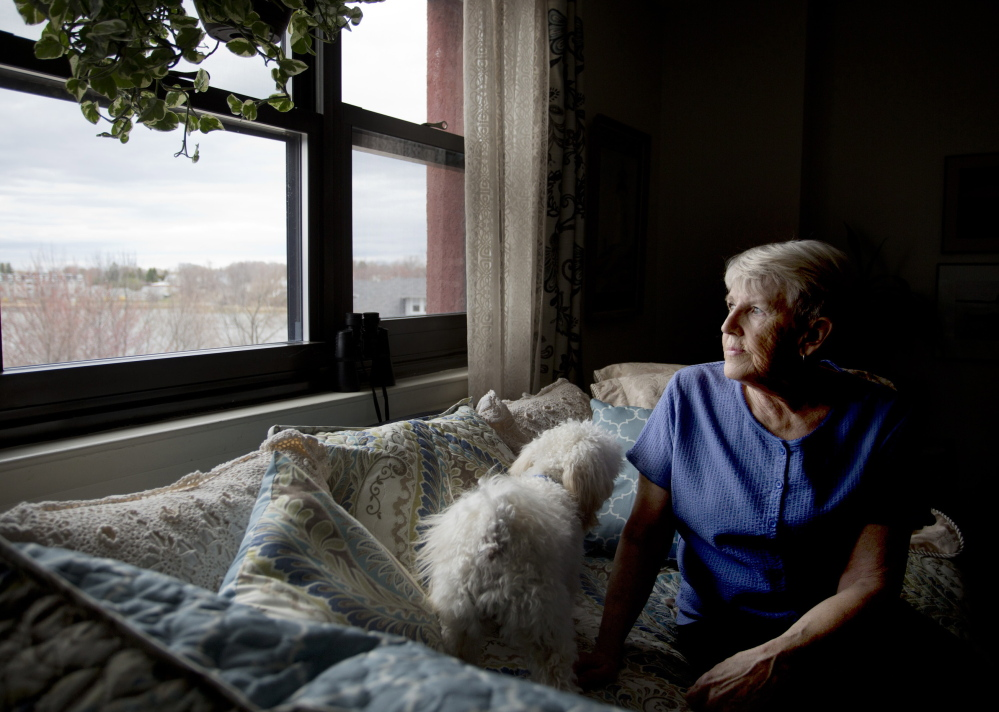 Jane Croston, a resident commissioner of the South Portland Housing Authority, spends time in her apartment at 425 Broadway with her dog, Brady. She says the behaviors of some young adults in the building are unsettling to seniors.