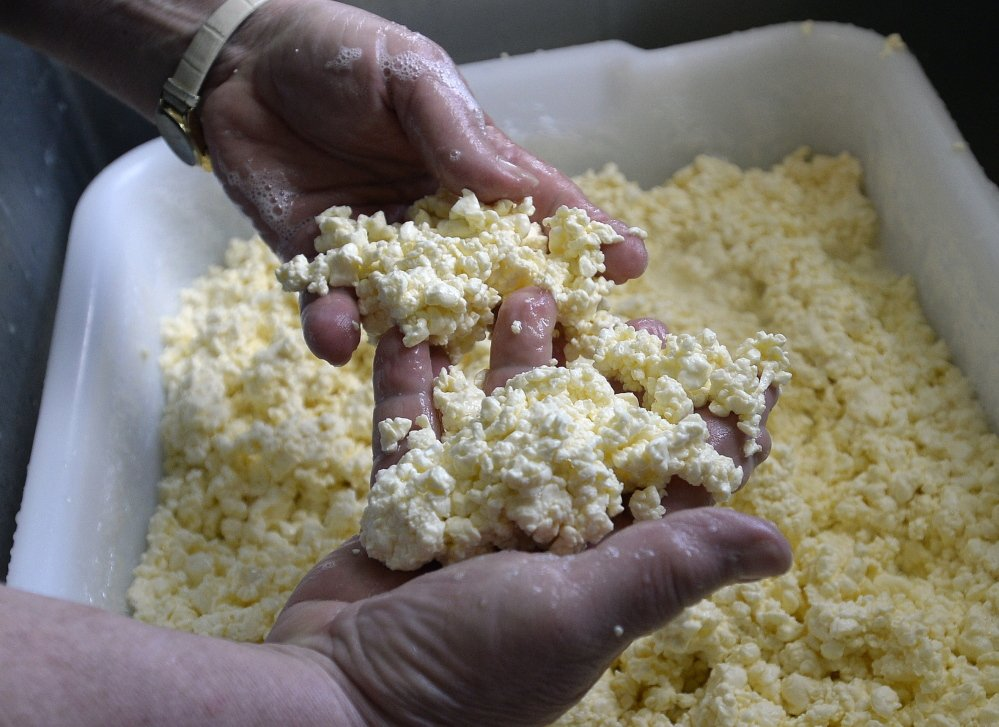 Karen Trenholm inspects cheese curds at Wholesome Holmstead in Winthrop.