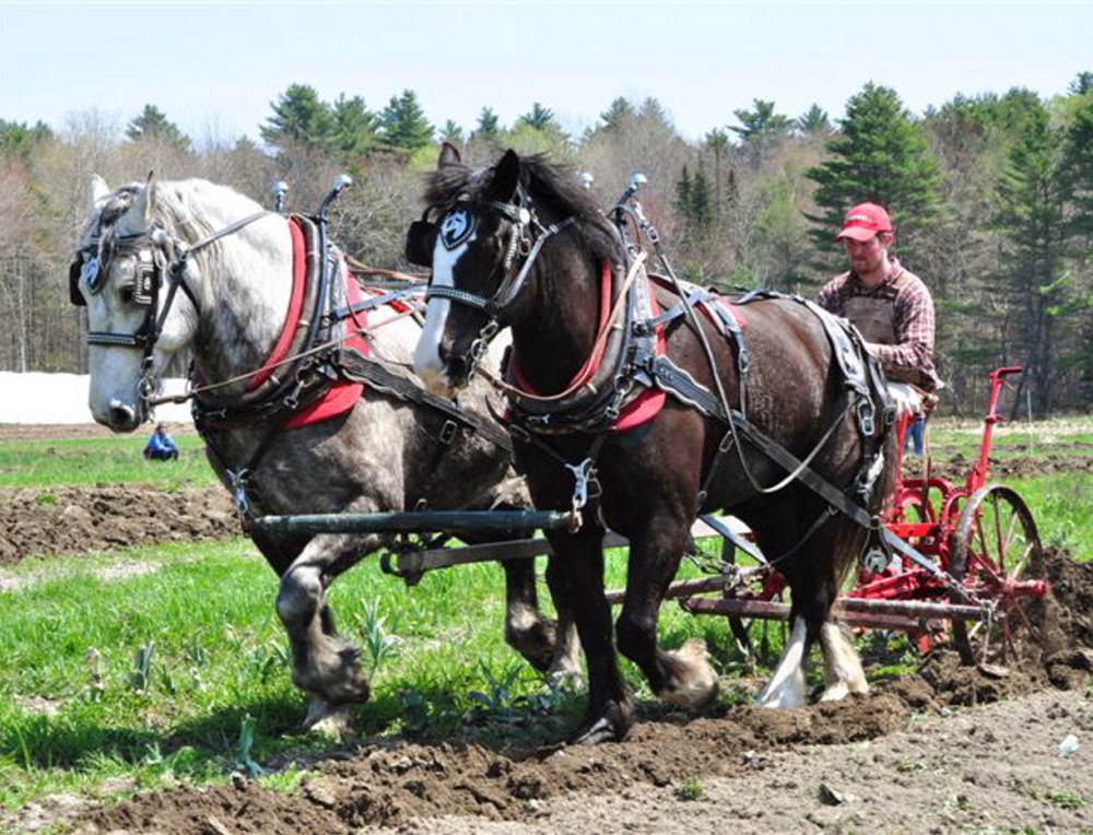 Plow Day at Skyline Farm in North Yarmouth on Saturday will include demonstrations with horse-drawn plows as well as wagon rides and other activities.