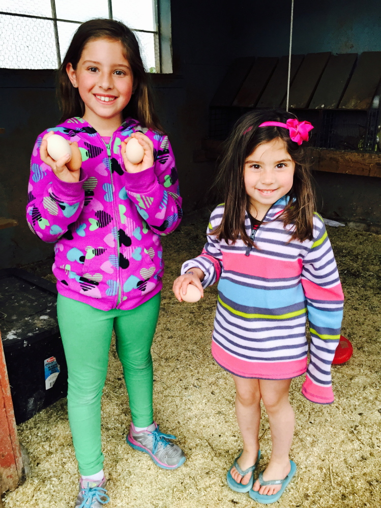 Ava, 8, and Macie Jenkins, 4, of Brunswick hold up the eggs they've gathered at Spring Peepers Farm in Topsham.