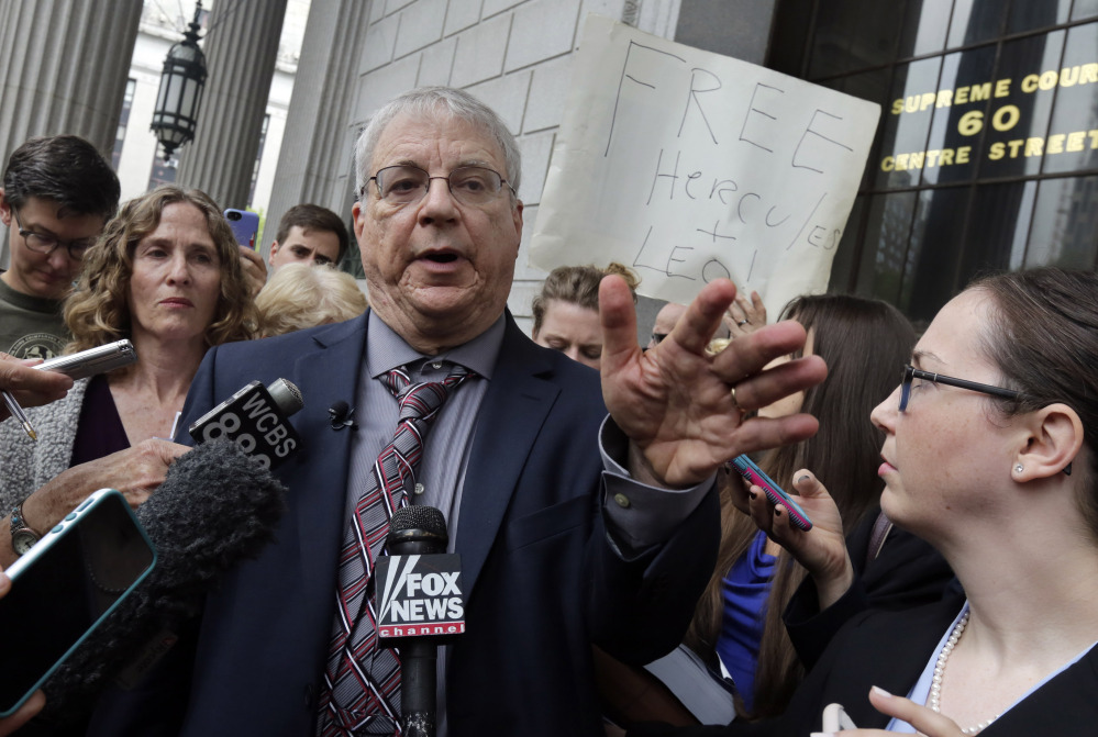 Steven Wise, president of the Nonhuman Rights Project, answers a question outside Manhattan State Supreme Court in New York after a hearing Wednesday. He told a judge that chimpanzees' confinement for research purposes is akin to slavery. The Associated Press