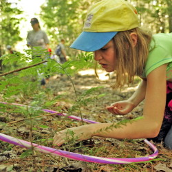"During the ""map your kingdom"" exercise, Molly Anderson searches the forest-floor territory marked by a hula hoop during Forestry Day in the town forest around China's primary and middle schools on Friday."