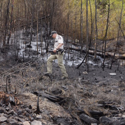 Matthew Bennett of the Maine Forest Service examines the aftermath of a fire at 183 S. Bridgton Road in Bridgton on Tuesday. Gregory Rec / Staff Photographer