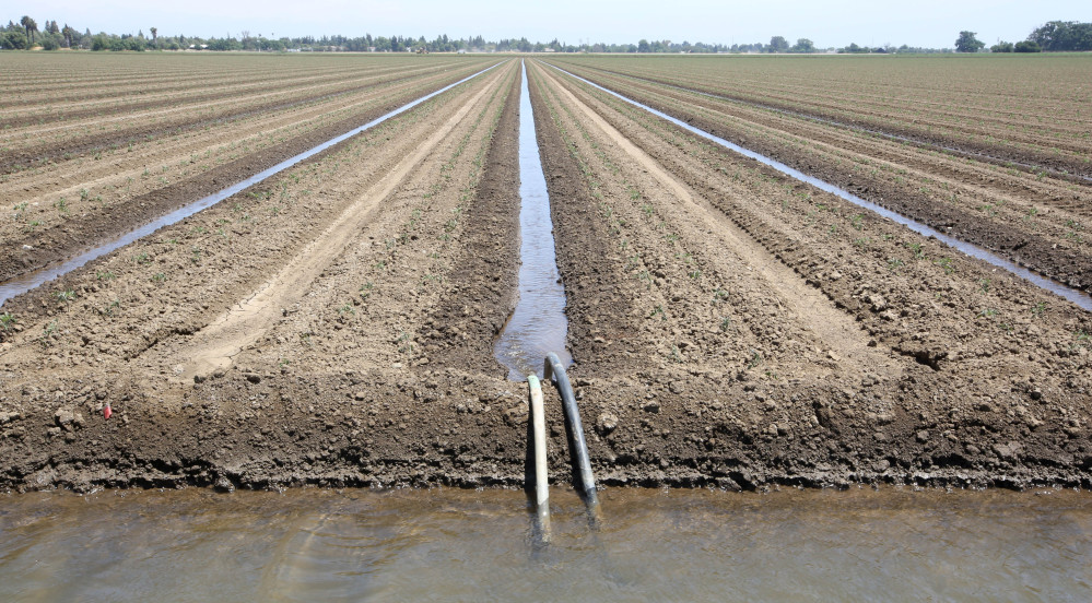 Farms like this one in Dixon, Calif., are tapping the Central Valley Aquifer to irrigate crops during the state's record-breaking drought. Studies say the aquifer is the most troubled in the United States.