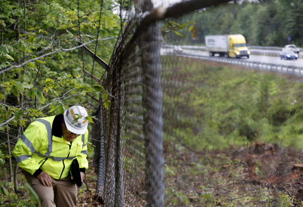 Dale Doughty, director of maintenance and operations with the Maine Department of Transportation, walks near Interstate 295 in Freeport on Tuesday before meeting with residents to talk about a tree-removal operation.