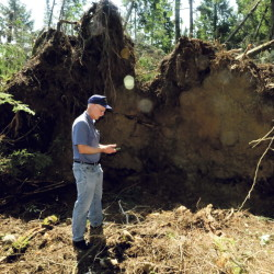 John Jensenius Jr., of NOAA, takes a distance reading while investigating the small microburst that toppled trees and damaged the Cedar Springs Golf Course in Albion on Wednesday.