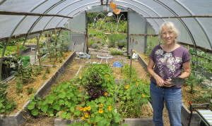 """In her self-built greenhouse and gardens in her Portland yard, Maureen Costello grows enough produce that her family eats """"fresh food at least six months of the year, and in a good year it is closer to nine months."""""""