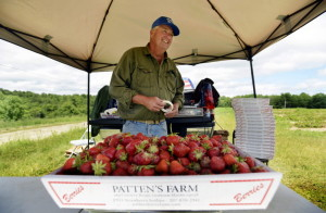 Frank Patten of Patten's Farm has been working in the family business since he was 12. Shawn Patrick Ouellette