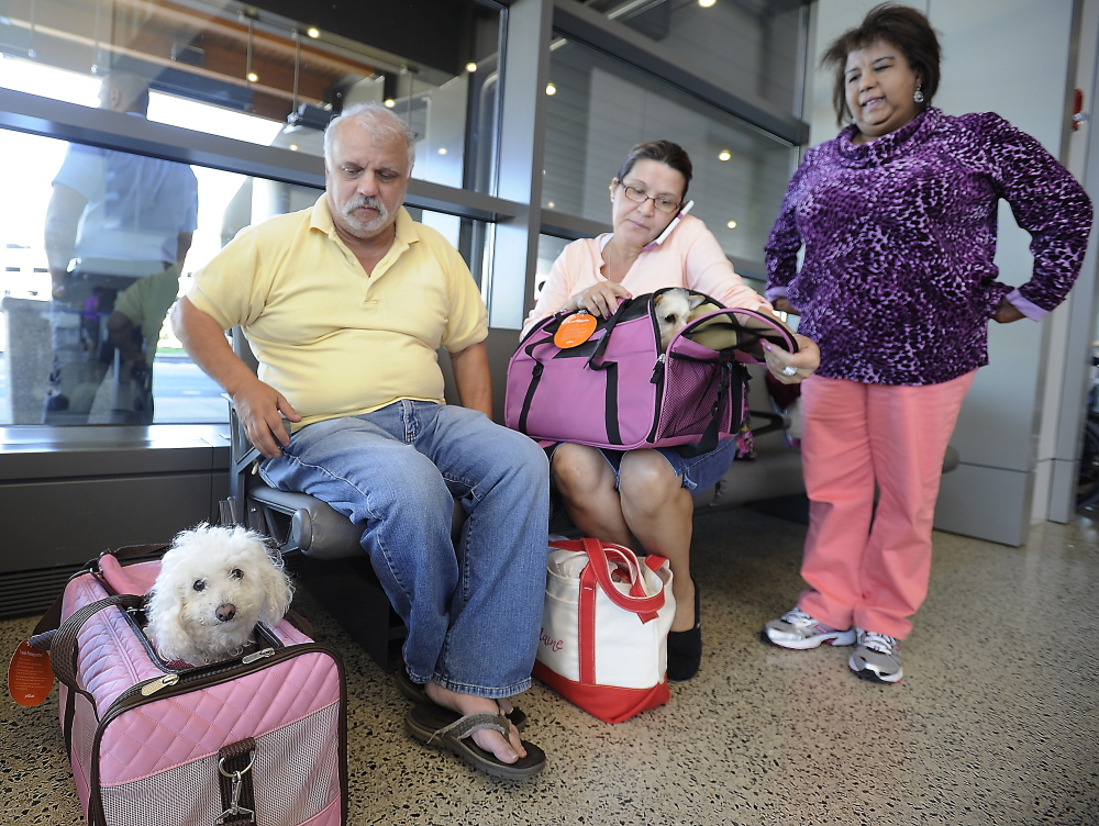 Tony Corrao, left, his wife, Victoria Torres, on the phone with customer service, and close friend Mayra Cuevas sit at the Portland International Jetport after being taken off a JetBlue flight Friday. Flight attendants told them their dog carrier was too large to fit completely under their seat, even though they flew to Portland with the carrier two other times with no problems.