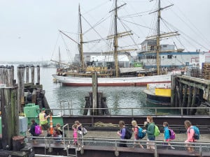 People file aboard the Machigonne II headed for Peaks Island as the fog lifts over tall ship Picton Castle on the Portland waterfront. Many of the tall ships will remain docked in Portland through Monday and are expected to depart early Tuesday.