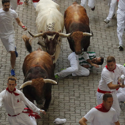 A reveler falls while others run with a Jandilla's ranch fighting bull during the running of the bulls of the San Fermin festival in Pamplona, Spain, Tuesday. The Associated Press