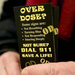 Ronni Katz of the city�s Overdose Prevention Project holds cards she hands out urging people to call 911 if there is a suspected overdose. At least 14 people overdosed on opiates in one 24-hour period last weekend in Portland. In a typical 24-hour period, five or six overdoses of all types � including non-opiates � are reported.