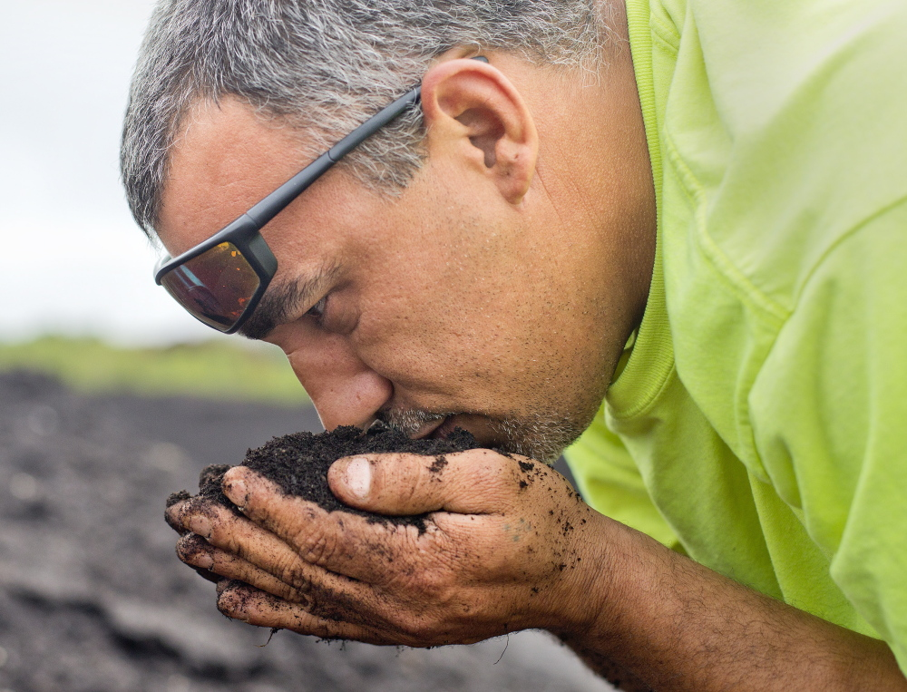 Amaral smells a handful of compost that is in the curing stage. Americans waste a lot of food, and estimates are that only 4 percent of food waste that could be composted is.