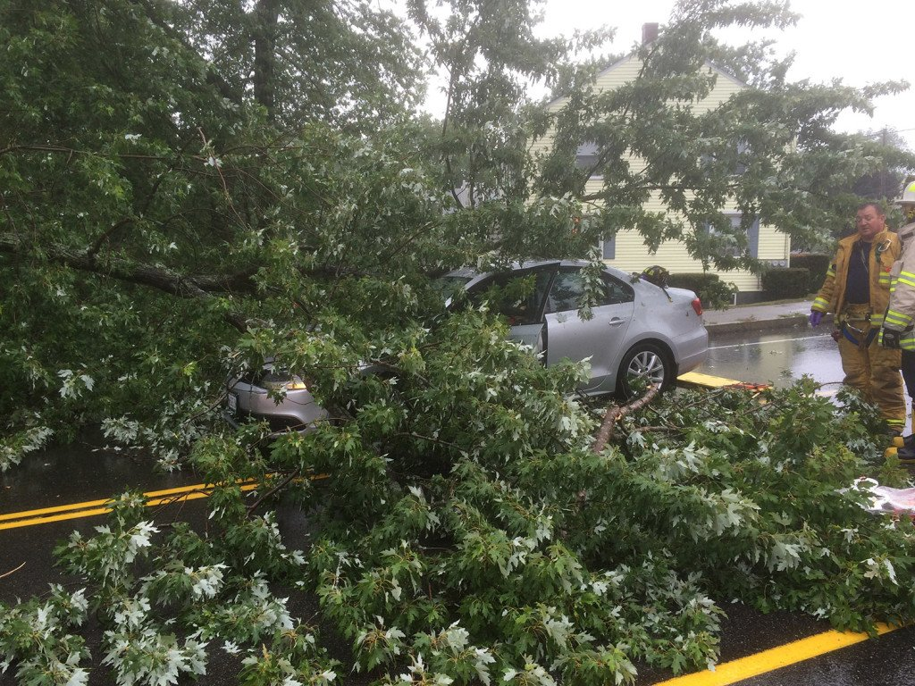 "Mary Keefe of Saco was driving west on Broadway in South Portland when a limb from a maple tree fell on her car, crushing the roof and crashing through the windshield. Fire Chief Kevin Guimond said, ""I've never seen anything like it in my life."""