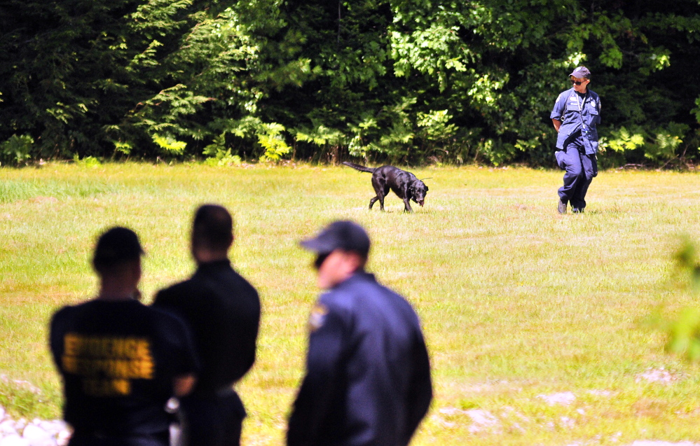 Investigators and a dog continue the search on Aug. 7 in Canton for clues in the case of Kimberly Moreau, who has been missing since 1986.