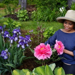 Marietta Atienza works in her Gorham garden by day and as a nurse at Maine Medical Center by night. Her property has the feel of an English cottage garden, with paths and statuary.
