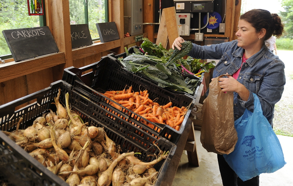 Jennifer Derosa of Auburn picks out her community share of vegetables at Little Ridge Farm. The farm's owners expect their new solar array will offset their electricity costs of about $2,400 a year.
